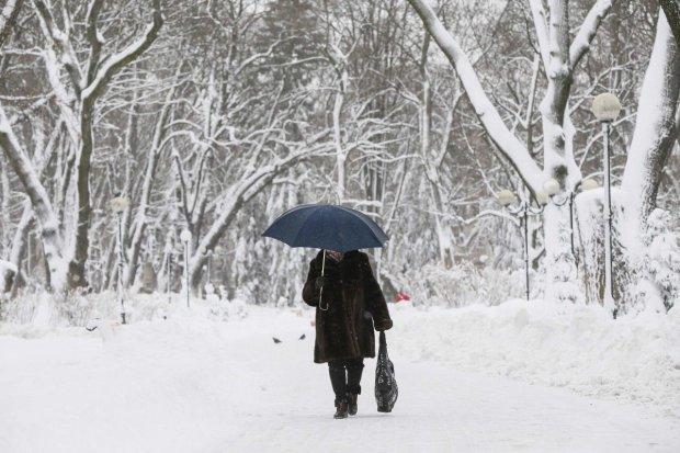 В Украину мчится оттепель: прогноз до конца недели