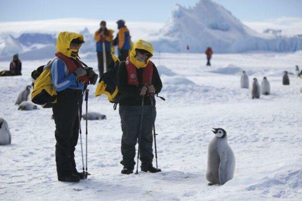 Світ залишиться без Антарктиди? NASA показало кадри наслідків глобального потепління