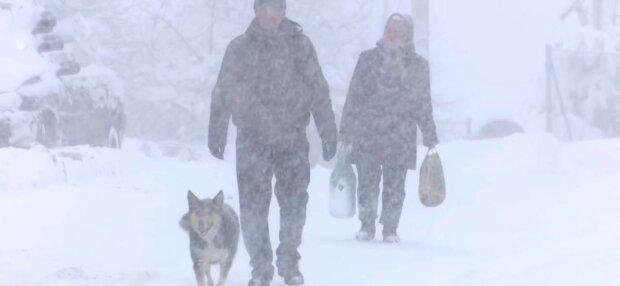 Сніг у Карпатах, фото: скріншот з відео