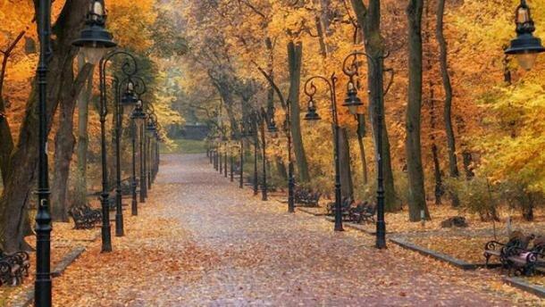 Харків'яни, не заблукайте: осінь занурить місто в непроглядний туман 28 листопада
