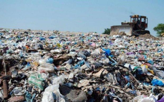 Львів відпочиває: Ліга зірок перетворила Київ на суцільне звалище