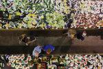 Люди с едой, фото: Getty Images