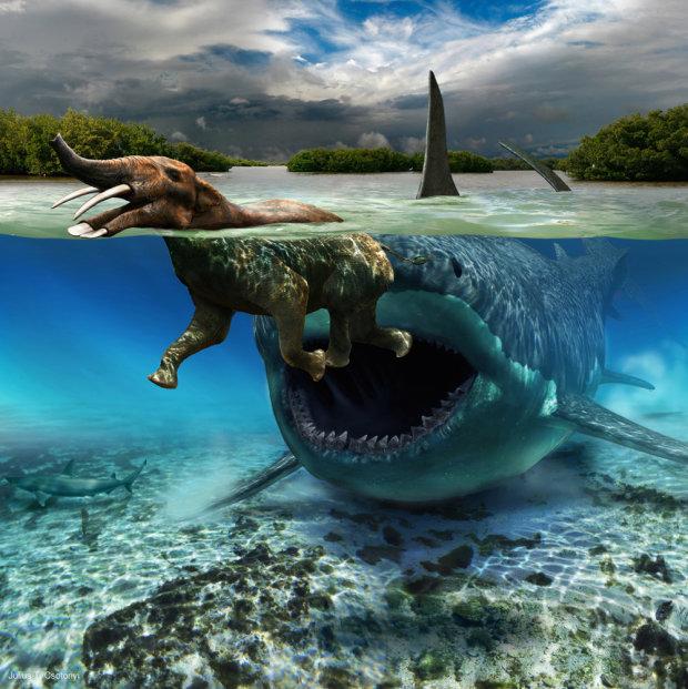 Привет из Юрского периода: древнейшие существа, живущие до сих пор на Земле