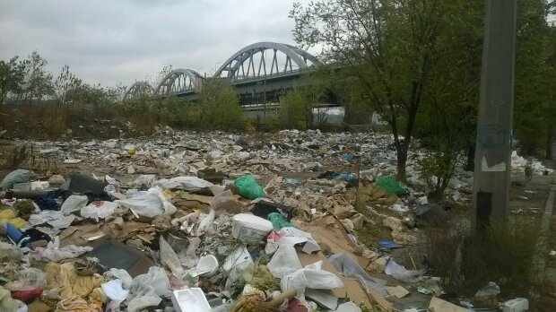 Свалки в Киеве - фото 112
