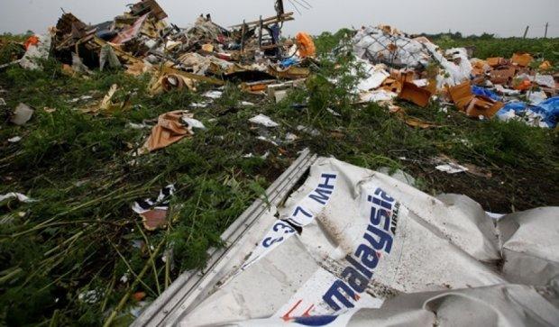 Китай хоче розслідувати авіакатастрофу МН-17 на основі резолюції ООН