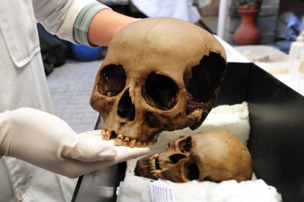 Следы жуткого убийства обнаружили под Одессой: от жертвы остался только скелет