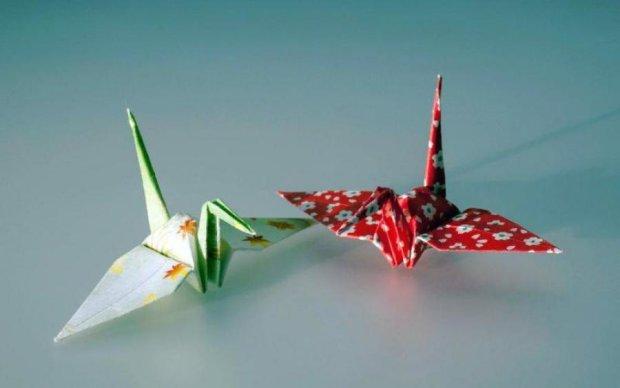Біологи навчилися робити пастки з орігамі