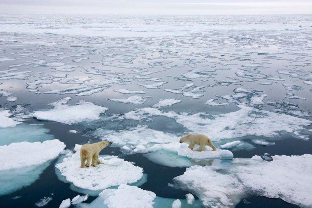 Вчені б'ють на сполох: глобальне потепління безповоротно змінило Арктику
