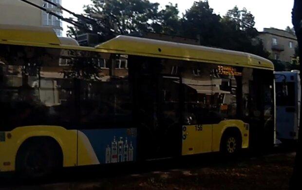 """Троллейбусы Садового """"заблудились"""" во Львове: """"Ты где, рогатый?"""""""