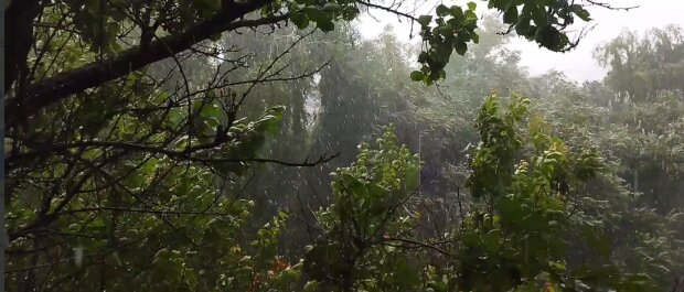 На Киевскую область обрушились все бедствия: потоп, град, грозы