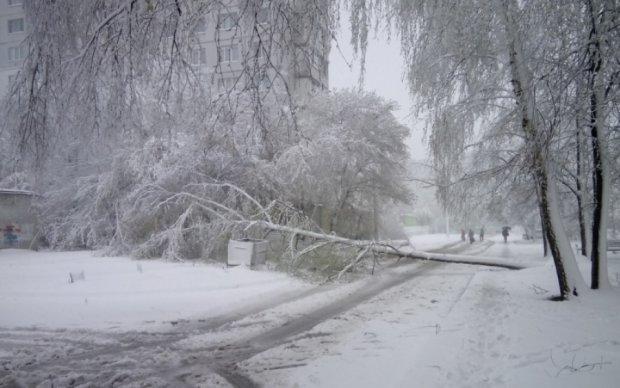 Харків поринув у сніговий апокаліпсис