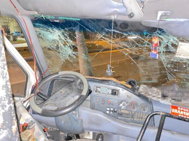 В Запорожье маршрутка влетела в столб фото: zp.npu.gov.ua