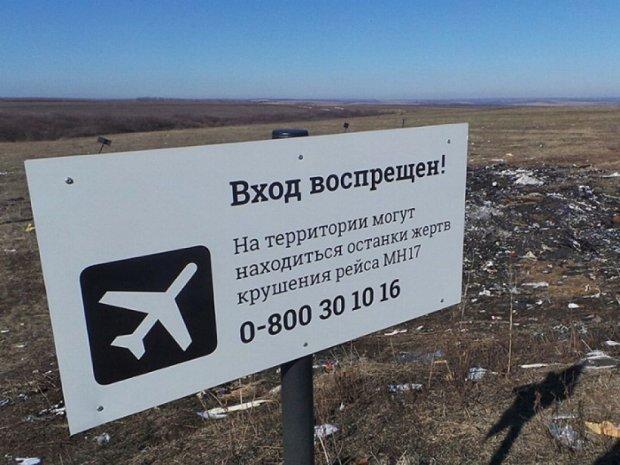 """Голландці реконструюють збитий на Донбасі """"Боїнг"""""""