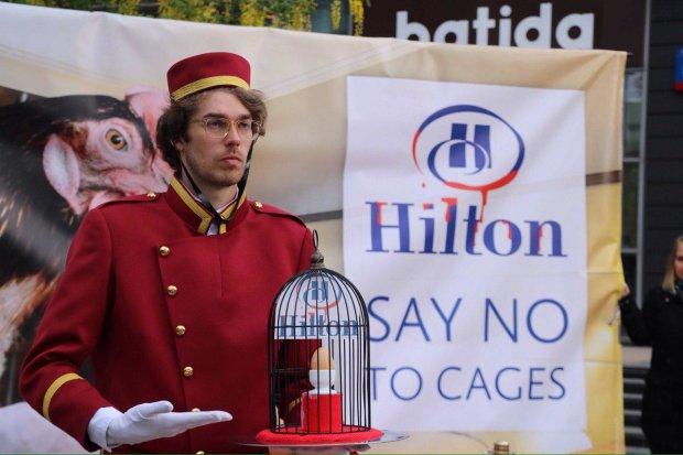 """Украинцы присоединились к всемирной акции против Hilton: """"Это жестоко и даже бесчеловечно"""""""
