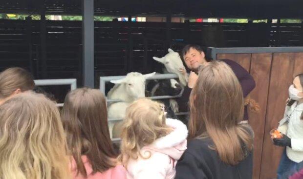 За козла буде відповідати – на Богдана накатали заяву до поліції через побиття