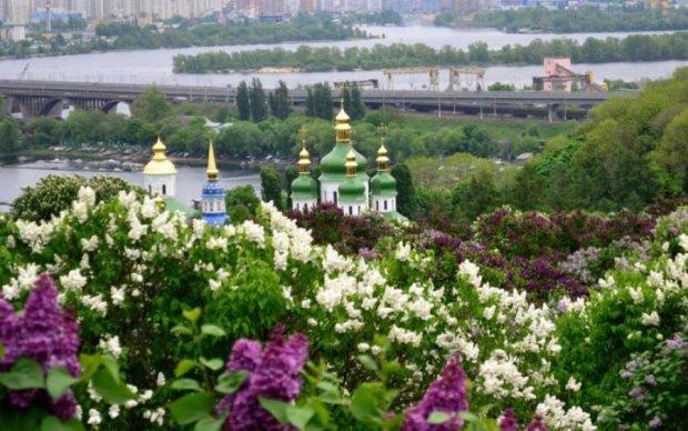 До України зайде новий лоукостер. Вгадайте, куди можна поїхати