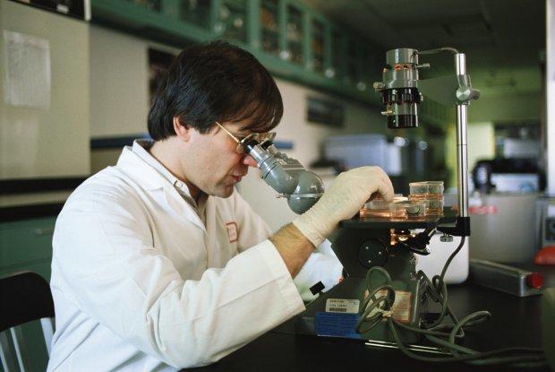 """Ученые нашли продукт, """"убивающий"""" раковые клетки: достаточно горсти в день"""
