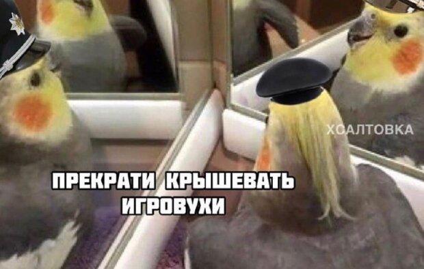 Українці не витримали закриття грального бізнесу: кумедні фотожаби піднімуть настрій кожному