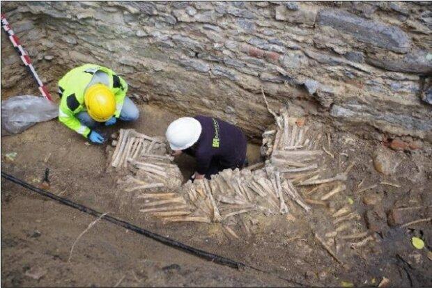 Під християнським собором виявили стіну з людських кісток, жахливій знахідці понад 300 років