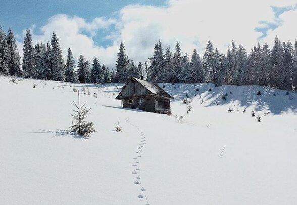 Карпаты, фото - vitalik.hurskyi/instagram