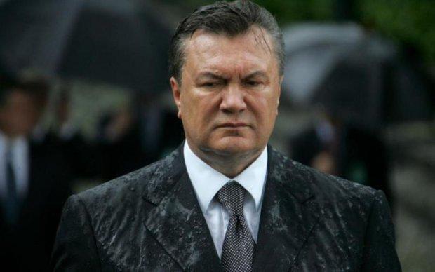 Мозок не слабо зачепило: українці пригадали про курйозний замах на Януковича