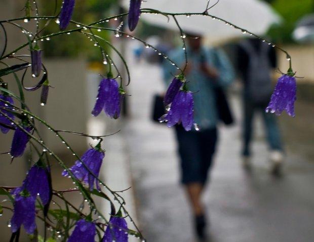 Погода в червні: аномальна стихія зіпсує українцям початок літа