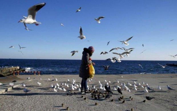 Погода в Україні: синоптики нарешті пообіцяли довгоочікуване тепло