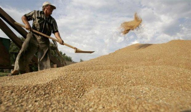 Экспорт зерна из Украины составил уже почти 10 миллионов тонн