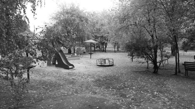 Штаны спущены, изо рта пена: загадочная смерть на детской площадке лишила киевлян дара речи