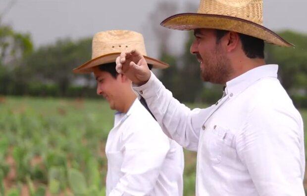 """Мексиканцы создают """"кожу"""" из кактусов, скриншот: YouTube"""