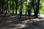 Голосеевский парк, скриншот