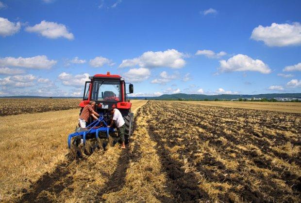 Эксперты предостерегли фермеров от экономии на удобрениях