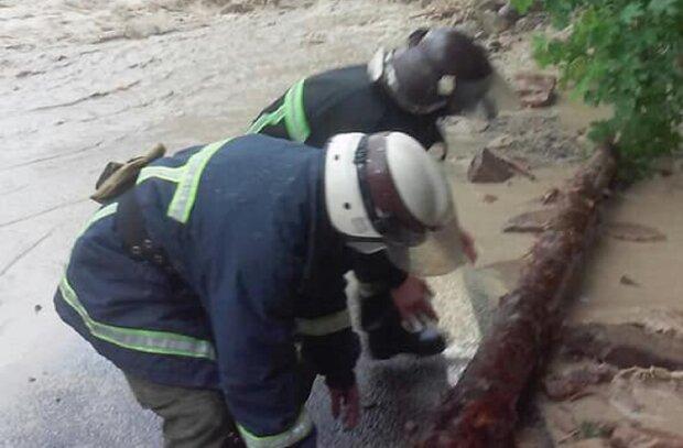 Затопленных прикарпатцев оставят без газа - готовить придется на кострах