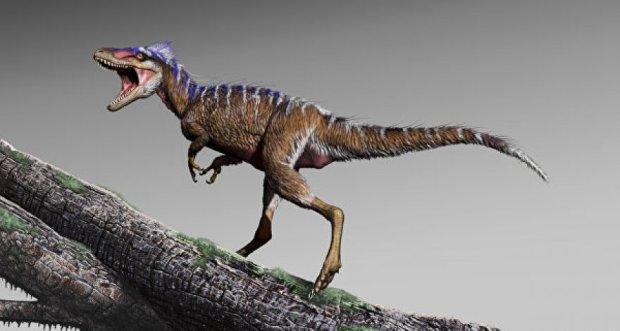 Ученые нашли самого тихого динозавра на Земле: ходил на цыпочках