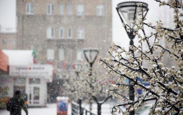 Зима близько: синоптики розповіли, коли Україну засипле снігом