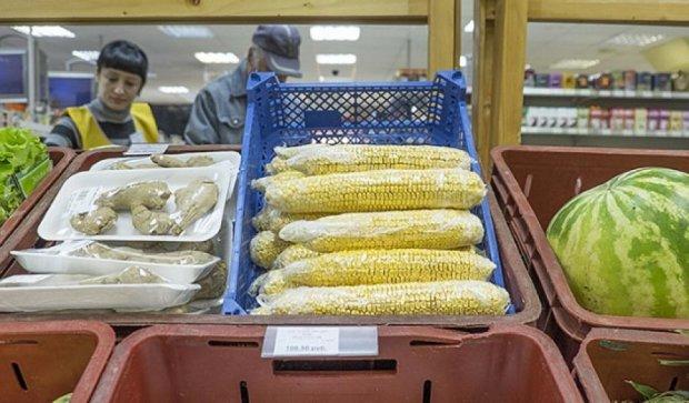 Росіян нічим годувати: на прилавках їжа для худоби (фото)