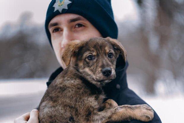 полицеский с щенком, фото facebook.com/mvs.gov.ua
