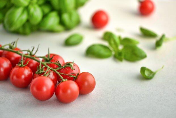 помидоры, фото Pxhere