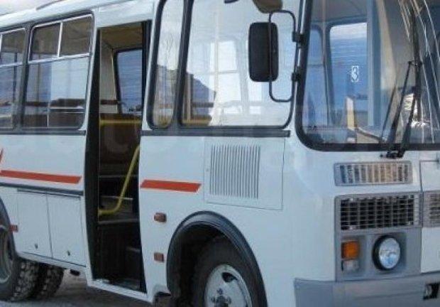 На Прикарпатье из автобуса во время движения выпала женщина