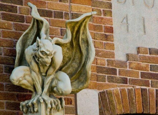 """""""Квартира Дракулы"""": балкон киевлянина облюбовала сотня жутких тварей, - фото не для слабонервных"""