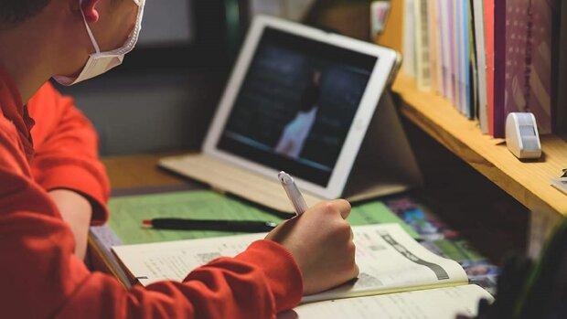Дистанционное образование. Фото: Информатор.