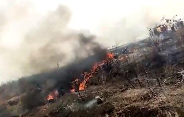 Авиакатастрофа в Нигерии, кадр из видео