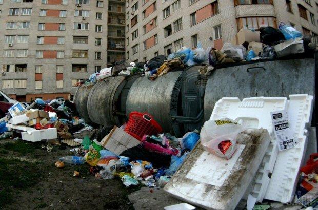Українців навчать правильно викидати сміття: нові тарифи вступають в силу