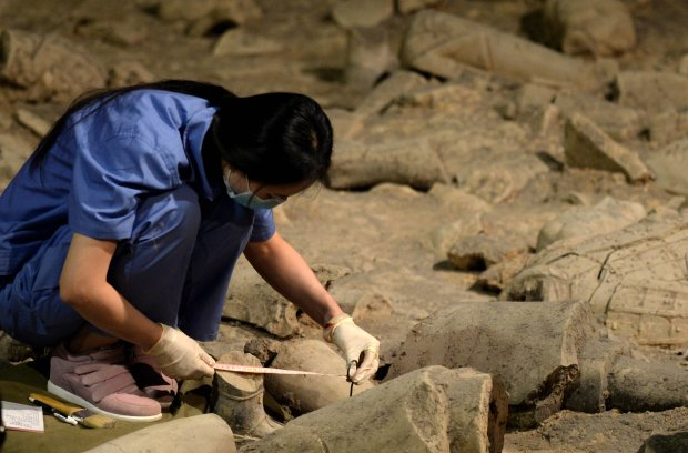 Археологи розкопали прадавню посудину з жовтою рідиною: пахне міцно
