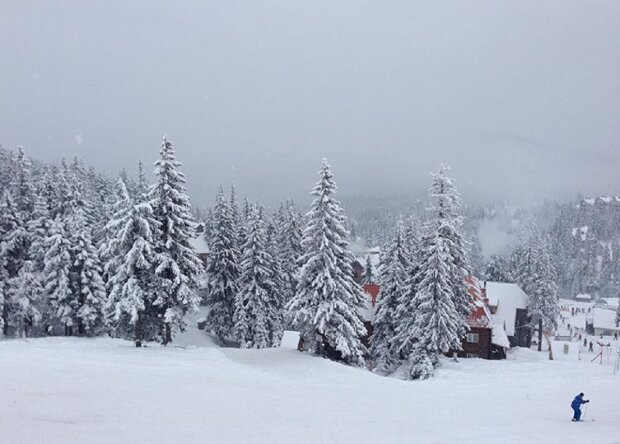 Драгобрат засипало снігом, фото: Instagram ot_pervogo_lica