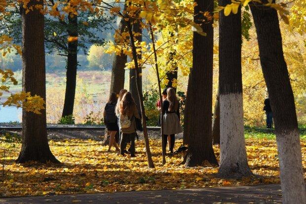 Погода на завтра: синоптики обещают украинцам чудесный выходной