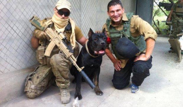 Нечеловеческая верность: пес в АТО жертвует собой ради хозяина