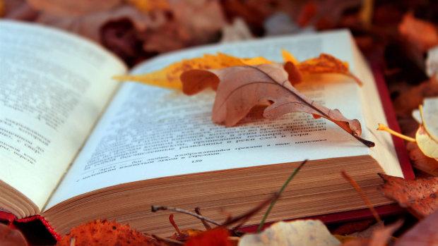 Что почитать: интересные книги для кемпинга, семейных и соло-путешествий