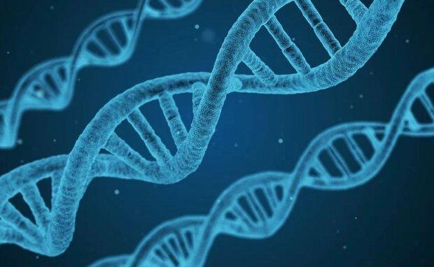 ДНК, фото: Pixabay