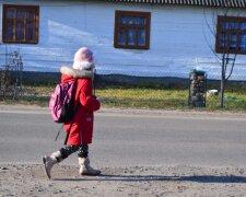 Украинские школы, фото: volga.lutsk.ua